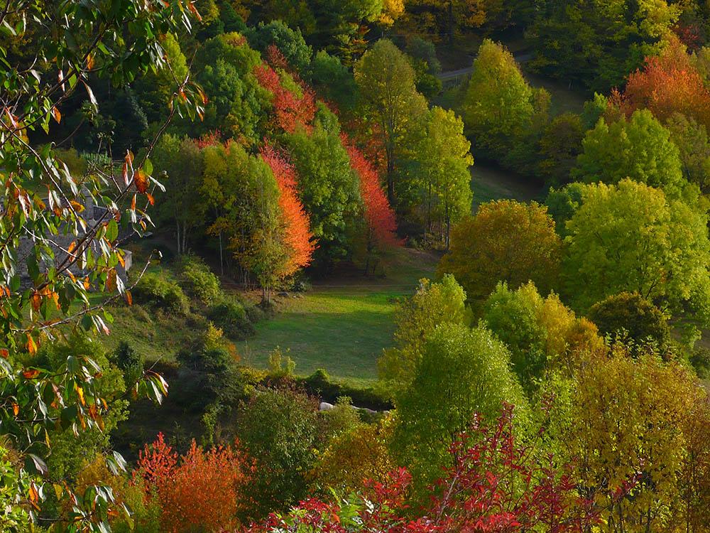 l'automne en vallée d'Aure