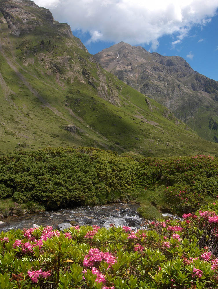 Vallée d'Auloueilh